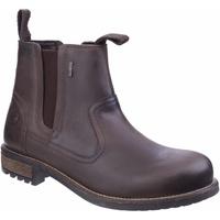 kengät Miehet Bootsit Cotswold Worcester Brown