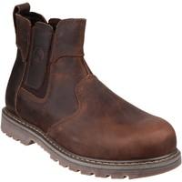 kengät Naiset Bootsit Amblers  Brown