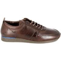 kengät Miehet Derby-kengät Kickers Olympei Marron Ruskea