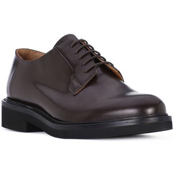 kengät Miehet Derby-kengät Luca Rossi POLISH OXBLOOD Rosso