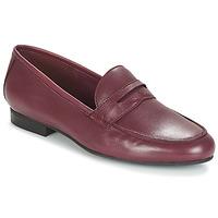 kengät Naiset Mokkasiinit André TIM Bordeaux