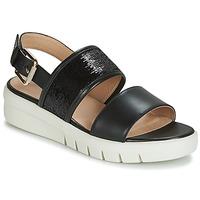 kengät Naiset Sandaalit ja avokkaat Geox D WIMBLEY SANDAL Black