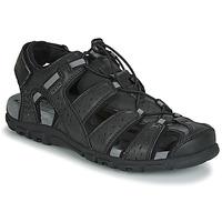 kengät Miehet Sandaalit ja avokkaat Geox UOMO SANDAL STRADA Black