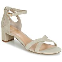 kengät Naiset Sandaalit ja avokkaat Lauren Ralph Lauren FOLLY Beige