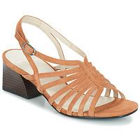 kengät Naiset Sandaalit ja avokkaat Vagabond BELLA Beige