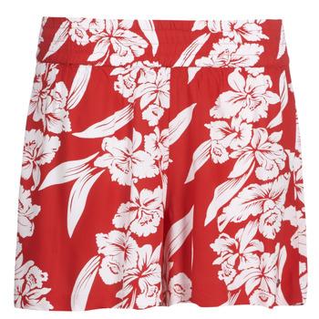 vaatteet Naiset Shortsit / Bermuda-shortsit Volcom ALOHA HA SHORT Red