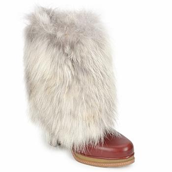 kengät Naiset Nilkkurit D&G DS3553 Brown / Beige