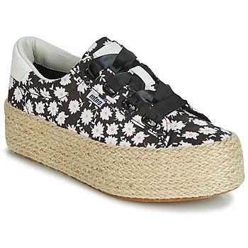 kengät Naiset Matalavartiset tennarit MTNG WANDA White / Black