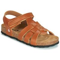 kengät Pojat Sandaalit ja avokkaat Citrouille et Compagnie JANISOL Brown