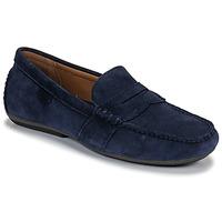 kengät Miehet Mokkasiinit Polo Ralph Lauren REYNOLD Laivastonsininen