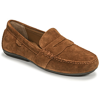 kengät Miehet Mokkasiinit Polo Ralph Lauren REYNOLD Ruskea