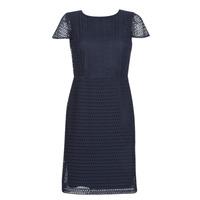vaatteet Naiset Lyhyt mekko Lauren Ralph Lauren NAVY SHORT SLEEVE DAY DRESS Laivastonsininen