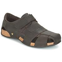 kengät Miehet Sandaalit ja avokkaat Panama Jack FLETCHER Ruskea