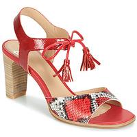 kengät Naiset Sandaalit ja avokkaat Perlato RUBY Red