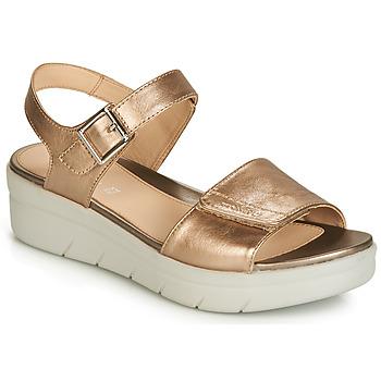 kengät Naiset Sandaalit ja avokkaat Stonefly AQUA III 2 LAMINATED Kulta