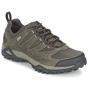 kengät Miehet Vaelluskengät Columbia PEAKFREAK XCRSN LEATHER OUTDRY Earth