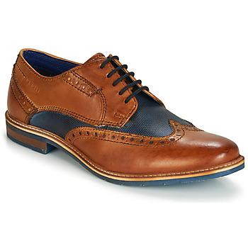 kengät Miehet Derby-kengät Bugatti TROISCINQ Cognac / Blue