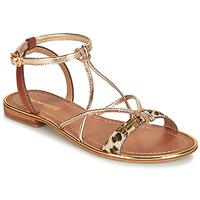 kengät Naiset Sandaalit ja avokkaat Les Tropéziennes par M Belarbi HIRONDEL Leopardi / Kulta