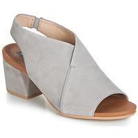 kengät Naiset Sandaalit ja avokkaat Wonders FILETI Taupe