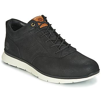 kengät Miehet Bootsit Timberland KILLINGTON HALF CAB Black