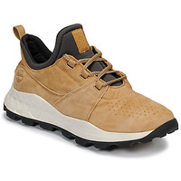 kengät Miehet Matalavartiset tennarit Timberland BROOKLYN LACE OXFORD Beige