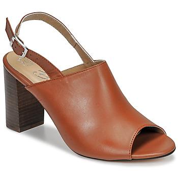 kengät Naiset Sandaalit ja avokkaat Betty London JIKOTEGE Camel