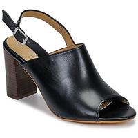 kengät Naiset Sandaalit ja avokkaat Betty London JIKOTEGE Black