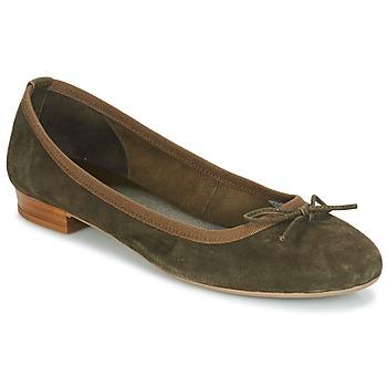 kengät Naiset Balleriinat André CINDY Kaki