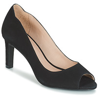 kengät Naiset Korkokengät André CECILIA Black