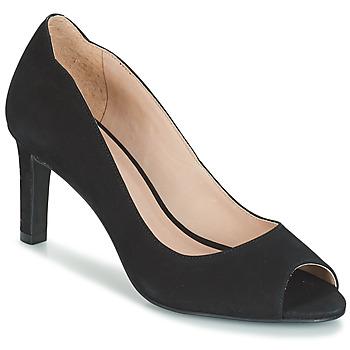 kengät Naiset Korkokengät André CECILIA Musta