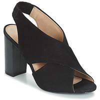 kengät Naiset Sandaalit ja avokkaat André SANTIE Musta