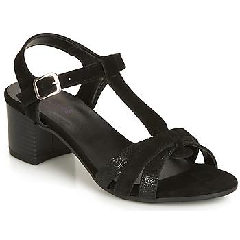 kengät Naiset Sandaalit ja avokkaat André CAROLA Black