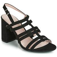 kengät Naiset Sandaalit ja avokkaat André CAPUCINE Black