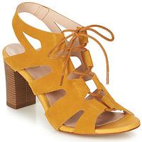 kengät Naiset Sandaalit ja avokkaat André ROMANESQUE Yellow