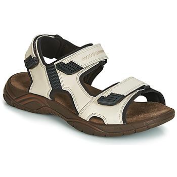 kengät Miehet Sandaalit ja avokkaat André MIAMI Beige