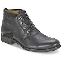 kengät Miehet Bootsit Redskins FRICOT Black