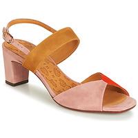 kengät Naiset Sandaalit ja avokkaat Chie Mihara LUZULA Pink