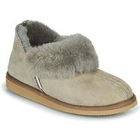 kengät Naiset Tossut Shepherd KARIN Grey