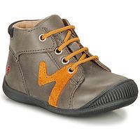 kengät Pojat Bootsit GBB OVELO Grey