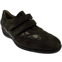 kengät Naiset Matalavartiset tennarit Calzaturificio Loren LOL8075m marrone