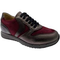 kengät Naiset Matalavartiset tennarit Calzaturificio Loren LOC3818bo tortora