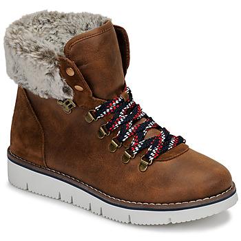 kengät Naiset Bootsit Skechers BOBS ROCKY Ruskea
