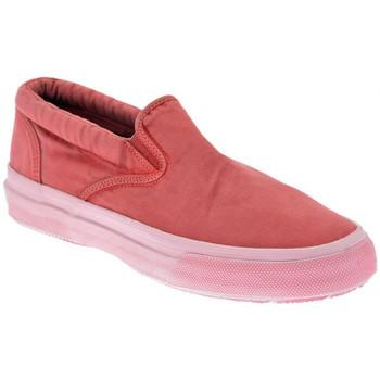 kengät Miehet Tennarit Sperry Top-Sider  Punainen
