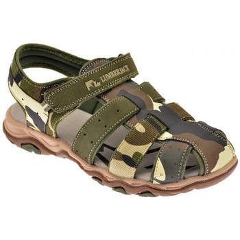 kengät Pojat Sandaalit ja avokkaat Lumberjack  Vihreä