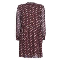 vaatteet Naiset Lyhyt mekko Betty London LILY Bordeaux
