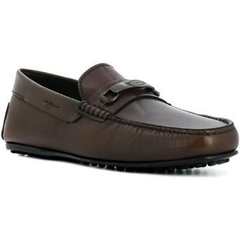kengät Miehet Mokkasiinit Tod's XXM0LR0AJ20D9C Cioccolato