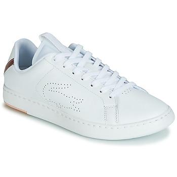 kengät Naiset Matalavartiset tennarit Lacoste CARNABY EVO LIGHT-WT 119 3 White / Pink