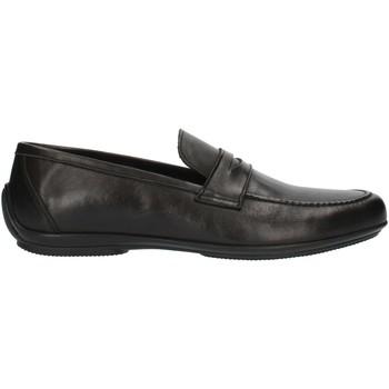 kengät Miehet Mokkasiinit Nicol Sadler M01 Black
