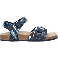 kengät Pojat Sandaalit ja avokkaat Pablosky 590120 Blue
