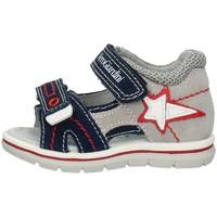 kengät Pojat Sandaalit ja avokkaat Nero Giardini P823170M Blue and gray